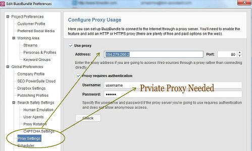 config private proxy on buzzbundle.
