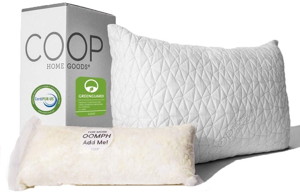 Coop Home Goods premium pillow