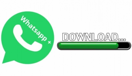 Download Latest Version Whatsapp Plus Apk 2021